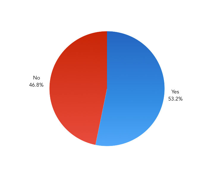 Do you use a tool to lint your CSS? – Pie Chart showing the results
